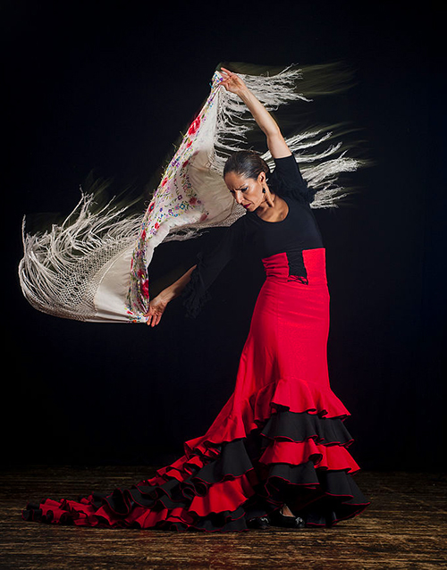 Flamenca copia